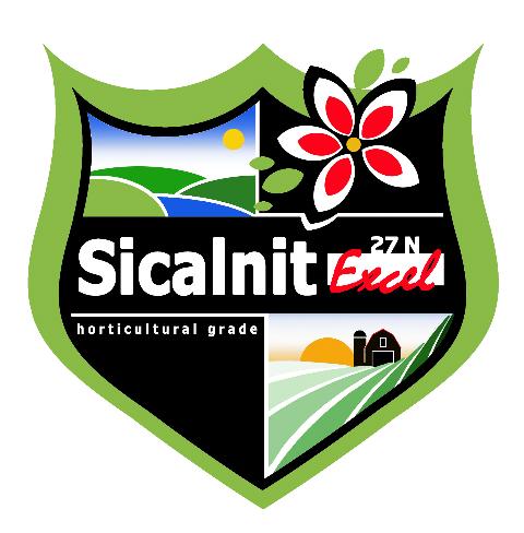 logo-sicalnit-excel-27-n